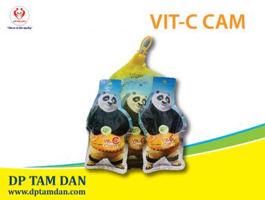 VIT-C CAM